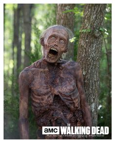 Walking Dead Walker Print  Stephen Vining  TWD