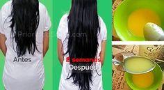 ¿Sueñas con tener cabellos largos, sanos y brillantes? Este es el remedio ideal, a base de ingredientes naturales para un pelo largo y sedoso.\r\n[ad]\r\nEsta mascarilla es muy fácil de preparar y su aplicación es bastante sencilla. Los ingredientes se pueden conseguir en el supermercado (tipo Walmart) o en la farmacia.\r\n\r\nIngredientes:\r\n- 1 yema de huevo\r\n- 1 cucharada de aceite de ricino\r\n- 1 cucharada de ácido málico (ácido de la fruta)\r\n- 2 cucharadas de champú (el que sueles… Curly Hair Cuts, Curly Hair Styles, Messy Hairstyles, Pretty Hairstyles, Hair Loss Treatment, Tips Belleza, Hair Hacks, Hair Growth, Healthy Hair