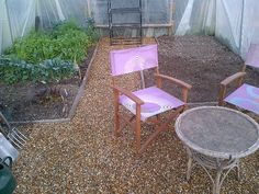 I will have a seating area in my polytunnel