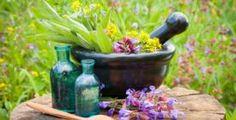 Pokud vám na zahradě roste hluchavka, máte přírodní lékárnu stále po ruce • Hobby / inStory.cz Anti Wrinkle, Cellulite, Natural, Beauty Hacks, Moisturizer, Essential Oils, Skin Care, Plants