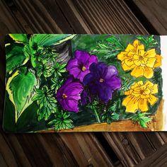 Hostas, woodruff, petunias, marigolds #sketchbook Marigold, Petunias, Flower Art, Flowers, Plants, How To Make, Home Decor, Homemade Home Decor, Floral