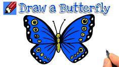 butterfly draw drawing simple easy beginners monarch drawings wings trick butterflies morpho rock
