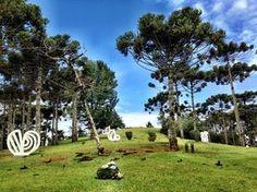 Campos do Jordão _Museu Felícia Leirner e reserva ambiental