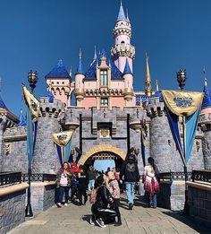 The most magical place on earth. Disneyland Today, Disneyland Park, Disney Annual Pass, Disneyland Photography, School Bus Conversion, Anaheim California, Adventures By Disney, Disney Style, Blue Bird