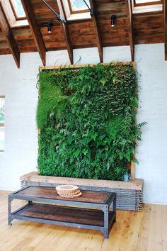 Creative DIY Indoor Gardens