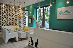 Demeri estudio, Furniture, Design, Home Decor, Projects, Mobiliario, Diseño, Decoración, Proyectos, Gattos, Cats, Vet, Veterinario.