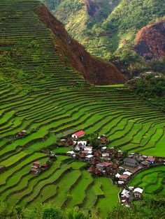 Batad Rice Terraces in Ifugao Province, Philippines (by eazy traveler).don't know who's rice fields these are but our family does own some rice fields in this Philippines so I tagged this pic... How beautiful!!!