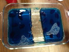 Moses parting the sea activity Blue jello with Swedish fish