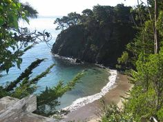Anchor bay beach, CA. Redwood forests meet the ocean at this remote beach where a beautiful trail leads through the campground and redwoods to the beach.