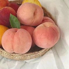 Hipster Vintage, Style Hipster, Vintage Grunge, Peach Aesthetic, Aesthetic Food, Aesthetic Pastel, Summer Aesthetic, Aesthetic Grunge, Aesthetic Vintage