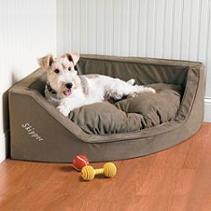 Use the Personalized Corner Dog Bed to transform an underutilized corner area into your loveable hound's personal hideaway. Its space-saving design gives your pet his own space, without invading yours. Fox Terriers, Wire Fox Terrier, Boston Terriers, Moda Animal, Dog Sofa Bed, Cat Dog, Pet Gate, Pet Feeder, Pet Furniture