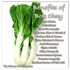 Bok Choy is a deep green leafy vegetable that resembles a mix of Romaine lettuce & celery. It is a crucifer more closely related to cabbage, and the entire vegetable can be used added raw to salads for a satisfying crunch or in soups, where the leaves and stalks should be chopped and added separately, since the stalks take longer to cook.