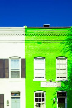 This would be a great color for our building exterior. #neon