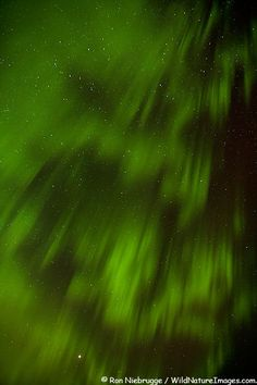 Aurora Borealis also referred to as Northern Lights in the skies over Denali National Park, Alaska