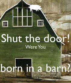 Southern ~ Shut the door! Were you born in a barn? Southern Words, Southern Humor, Southern Sayings, Southern Pride, Southern Comfort, Southern Charm, Southern Belle, Southern Momma, Southern Drawl