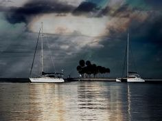 'Sailboats' Looking toward Tampa Bay from the downtown St. Petersburg waterfront © Jim Hill