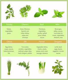Pocket The Herbs And Spices Issue Fitness Nutrition Diet Weight Loss