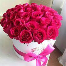 نتيجة بحث الصور عن تحميل مناظر طبيعية متحركة مجانا Fresh Flowers Arrangements Beautiful Flower Arrangements Happy Flowers
