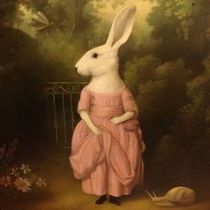 stephen mackey This just what you need to complete your day...a rabbit in a dress.