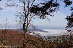 In der Natur unterwegs: Herbstwandern über dem Nebel - Aussicht vom höchsten Punkt - #Jura #wandern #Schweiz #Aargau