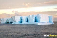 Antarctica in Photos: Icebergs, Glaciers and Penguins