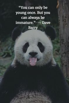 """#Quote #of #the #Day. """"You can only be young once. But you can always be immature."""" ― Dave Barry"""