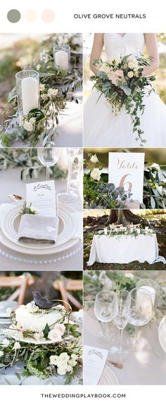 Olive Grove Neutrals Wedding Mood Board | Josie Richardson Photography