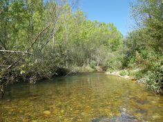 A finales del verano el río  luce magnifico, y este brazo del río promete.