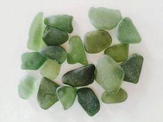 19 vetri piatti di diverse forme levigati dal mare delle Cinque Terre, Ritrovati a Monterosso  Colore: verde bottiglia  Dimensioni: da 10x18 mm a 20x28 mm