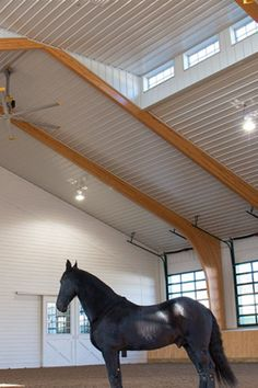 Morton Buildings offers the best equestrian structures inside and out. Customizable, high quality protection for your horses in their new barn, riding arena or run-in shelter. Head to our website to see what we've done.