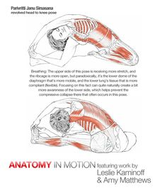 8 best foot exercises images  foot exercises plantar