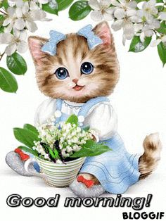 Have a good day with this very cute good morning ecard. Free online A Very Cute & Adorable Morning Ecard ecards on Everyday Cards I Love Cats, Cute Cats, Funny Cats, Crazy Cats, Beautiful Gif, Animals Beautiful, Kittens And Puppies, Cats And Kittens, Cute Baby Animals