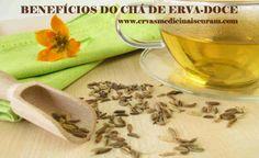 Chá de Erva-Doce - combate problemas digestivos, insônia e outros benefícios. Confira !