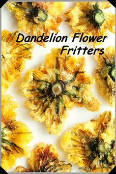 Edible flowers – foraged dandelion blossoms – I like dandelion blossoms mixed wi… Edible flowers – foraged dandelion blossoms – I like dandelion blossoms mixed with onions in liver & onions. Herb Recipes, Veggie Recipes, Vegetarian Recipes, Cooking Recipes, Healthy Recipes, Dandelion Recipes, Flower Food, Kraut, Gourmet