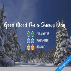 Good Mood On a Snowy Day - Essential Oil Diffuser Blend