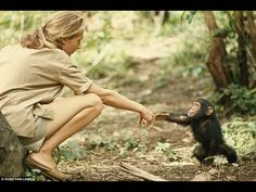 How Jane Goodall Turned Her Childhood Dream into Reality: A Sweet Illustrated Story of Purpose and Deep Determination | Brain Pickings
