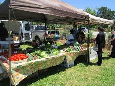 Hilton Head Island, SC Festivals & Events Calendar | Hilton Head Island, South Carolina - Shelter Cove Farmers Market