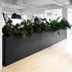 We added a Modern Elite Divider Aluminum Planter in Suede Bronze at Kivvit's Chicago office. It both livens up the space and adds some comfortable division between the walking space and desk space. Corporate Office Design, Open Office Design, Cool Office Space, Office Workspace, Office Interior Design, Office Interiors, Office Decor, Desk Space, Office Designs