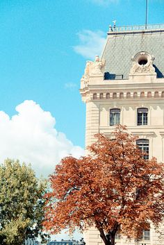Paris. Luxembourg Gardens.