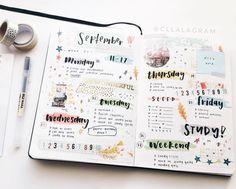 Bullet Journal Ideas (@berryystudies): @cllalagram