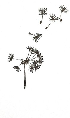 Tiny Dandelion Original Ink Drawing, 3X5, Fly Little Ones Fly.... via Etsy.