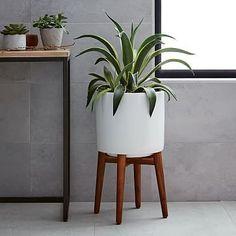 Plants are a MUST in home decor! Mid-Century Turned Leg Standing Planters - from West Elm