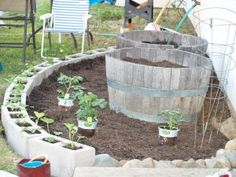Round raised bed with strawberries planted in cinder block border and wine barrel pots