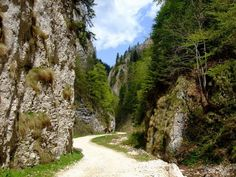 Panoramio - Photos by Gabriel Avramovici > best Turism Romania, Romania Travel, Buy Airline Tickets, Plan Your Trip, Tourism, Things To Do, Beautiful Places, Places To Visit, Around The Worlds