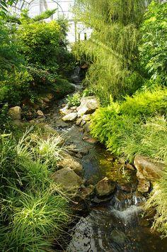 Duthie Park, The Botanical Gardens - Aberdeen, Scotland