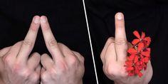 50 nuances de doigts, ou comment varier vos doigts d'honneur