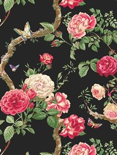 black background, English roses