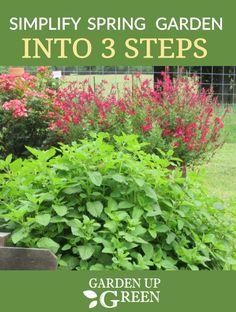 142 Best Spring Garden Ideas Images Garden Spring Garden Plants