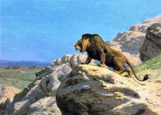lion on rock Jean Leon Gerome art for sale at Toperfect gallery. Buy the lion on rock Jean Leon Gerome oil painting in Factory Price. All Paintings are Satisfaction Guaranteed Pierre Auguste Renoir, Jackson Pollock, Jean Leon, Rembrandt, Lion Dog, Cleveland Museum Of Art, Albrecht Durer, Oil Painting Reproductions, African Animals