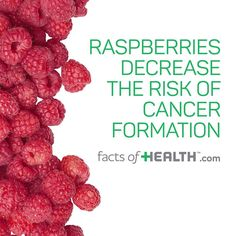 Recent studies have shown that organic raspberries provide significantly more antioxidants than non-organic raspberries.